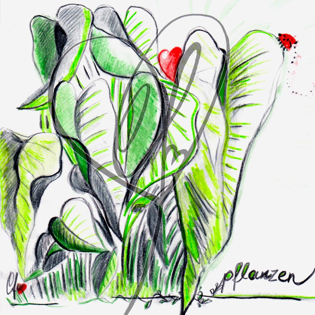 """Skizze """"Pflanzen"""" 2020 von Katrin Firtzlaff"""